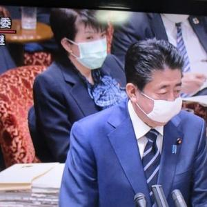 マスク、マスク、マスク
