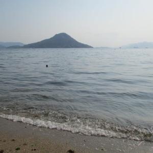 広島湾でワカメを採る