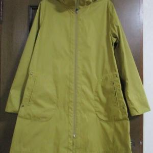 イチョウ色のコートを買う