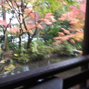 三滝観音の紅葉、きれい