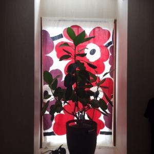 マリメッコ・ウニッコな窓