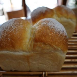 メインは湯種食パンだよ〜。