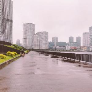 大阪マラソン2022市民アスリートエントリーと今日のラン
