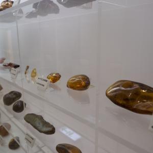 日本一周 岩手県久慈市 琥珀博物館で宮沢賢治の愛した琥珀を見る
