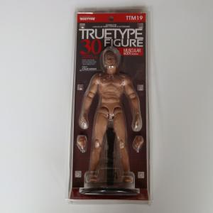 HOT TOYS 1/6 FULLY POSEABLE ACTION FIGURE TRUE TYPE