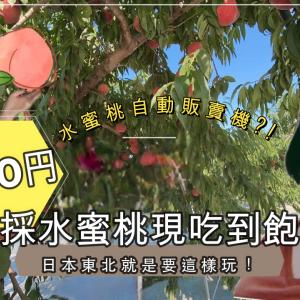 【日本東北超好玩】880日圓現採水蜜桃現吃!?|300日圓隱秘水蜜桃自動販賣機?!
