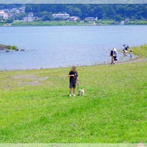 初めてはマヌキャン・その②(河口湖おさんぽ編)