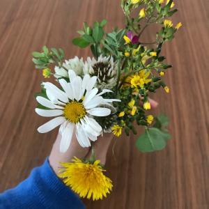 幼児と過ごすコロナ休み⑤〜野原で花を摘んで飾ってみよう〜