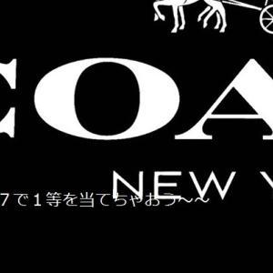 奥さんが事後報告で10万円近いCOACH(コーチ)のバッグ買ってきた