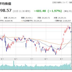 相場雑感 中国不動産問題で指数大幅下落 意外と底堅い?