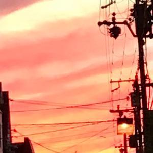 立ち止まって息を飲む程美しい夕焼けでした✨
