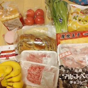 業務スーパー無くして、食費削減達成できないよ!