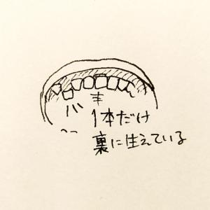 娘の歯科矯正は、◯◯万!