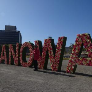 広島はなのわ2020 市民球場跡地