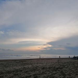 ビーチでお弁当と朝の散歩と