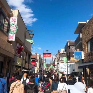 鎌倉小町通りのオススメしらす料理「アマルフィイ」でオシャレなランチ