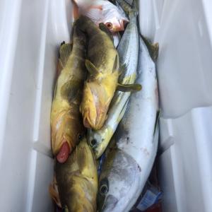 魚釣り19  たぶん釣りに行ってきた?