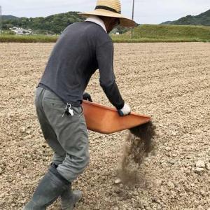 淡路島・鮎原米づくり2020 vol.1|堆肥フリフリの末、ぎっくり腰に…😭