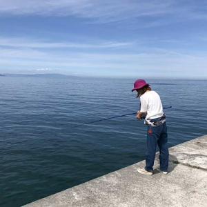 淡路島・炬口で豆アジ調査❗️10匹が目標だったんですけど、、😭五目釣りは達成です😆