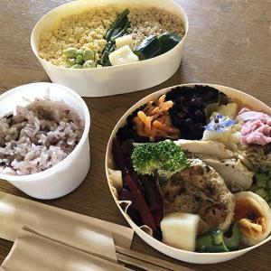 淡路島・PATRASCHEの素敵空間で、GOODBENTOの発酵食弁当ランチしてきました〜😁