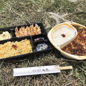 淡路島・丈夫(ジャンフー)のお弁当ランチ❗️炒飯・餃子弁当には餃子が14個も🤩麻婆弁当はボリューミー♪