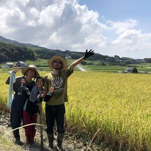 淡路島・鮎原米づくり2021 #14|先日の台風で田んぼが水だらけ😭稲刈り前に溝掘り作業💦