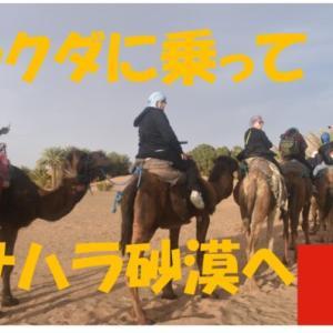 ラクダに乗ってサハラ砂漠へ【モロッコ・スペイン・ポルトガル】旅行記4日目