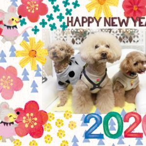 新年のご挨拶♪