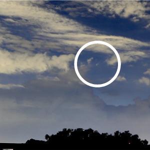 撮れた…のか!?ネオワイズ彗星(2020年7月)