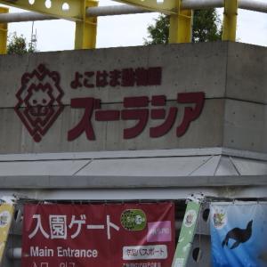 8月30日横浜動物園ズーラシア