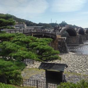 錦帯橋とオトリ缶