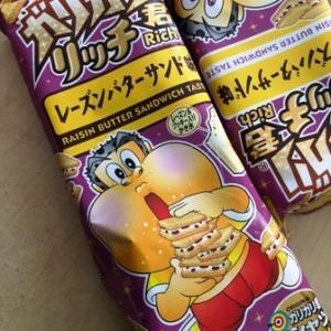 ガリガリ君リッチ・レーズンバターサンド味を食べてみたハナシ