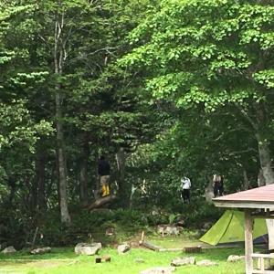 【北海道キャンプ場】知床国立公園羅臼温泉野営場レポ