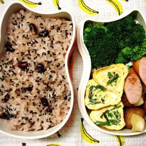 今日のお弁当〜お赤飯とネギ入り卵焼き!