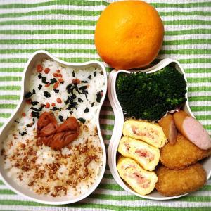 今日のお弁当と今年のラスト朝ラン!