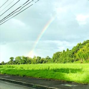 猛暑の日に虹!…の後の怒り