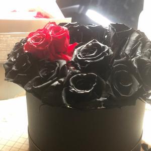 キライだった黒バラが、美しく見えるようになった理由とは?