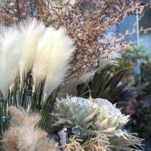 ディスプレイのお花の流行色は、ファッションと同じ⁈
