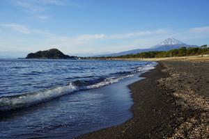 海に夕日に富士に城。イルカやアニメも 盛り沢山の沼津湾