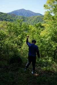 天然児、塔の山でチョウと戯れる(聖峰の桜もご紹介)