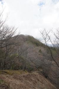 山行 貪欲山笑、アカヤシオをもっと見たい! 川苔山、蕎麦粒山その2