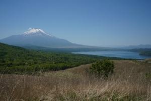 富士五湖+一湖 ぐるりと富士山漫遊