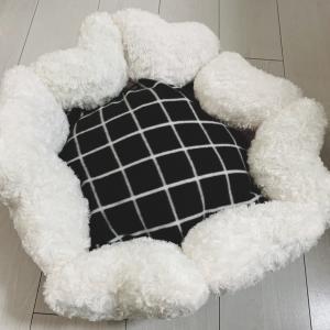 ダイソーの材料で愛犬のベッドをDIY