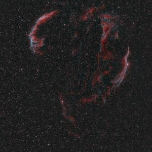 実戦 「網状星雲」、、、が。