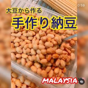 おうちで手作り納豆を作りました【YouTube】