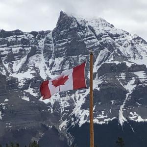 太陽がいっぱい in Canada