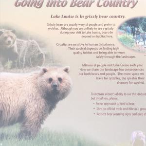 熊を殺すな