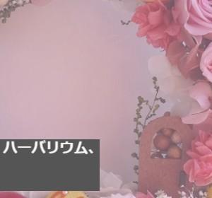 ホームページを見直して、気分もすっきり~!これで安心(#^^#)
