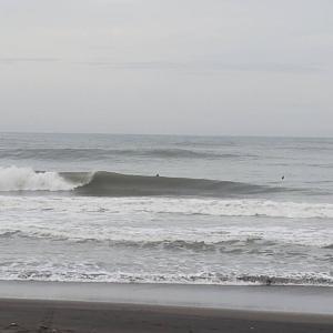 朝活SURF