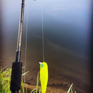 朝活Fishing!!